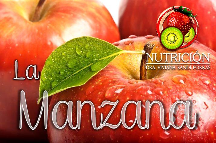 LA MANZANA  Las manzanas contienen antioxidantes como las catequinas y quercetina que actúan sobre los radicales libres, lo cual las convierte en una fruta sumamente beneficiosa para el rejuvenecimiento celular.  Poseen además, muy pequeñas cantidades de proteínas y de grasas. Entre las vitaminas que se destacan están la C y la E, y entre los minerales, el potasio y el hierro.