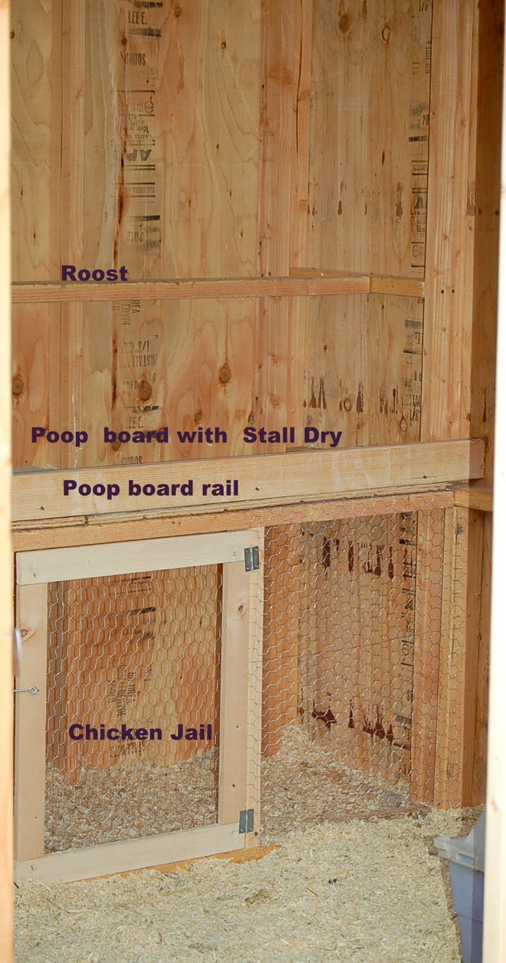 "Owner of image says, ""We built this poop board under our roost as an after thought. We wanted to maximize use of space by adding the ""chicken jail"" below that. We use it for transitioning new or young chickens into the group, broodies, injured, etc. It has turned out to be our favorite feature of the coop. The stall dry in the poop board makes cleaning a breeze (scoop like cat litter), tackles odor, and keeps mites and bugs away."""
