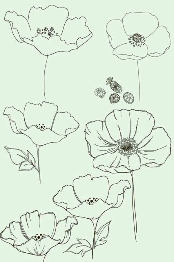 50 Easy Flower Pencil Drawings For Inspiration Pencil Drawings Of Flowers Flower Sketches Floral Drawing