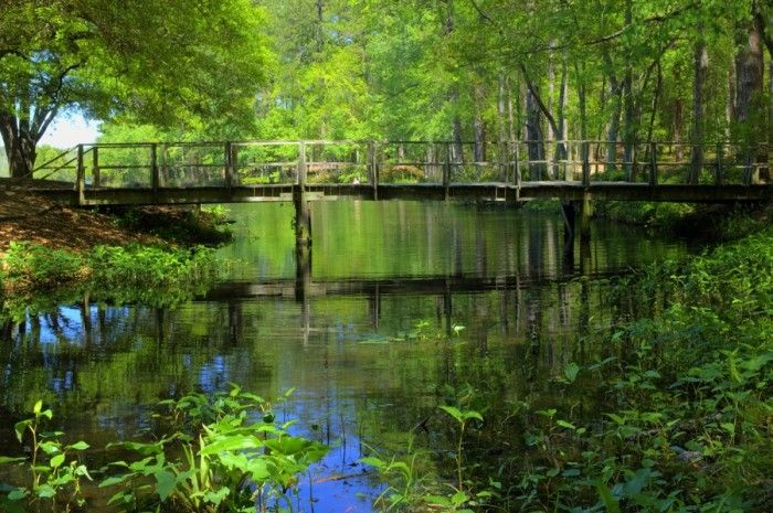 These 14 Epic Hiking Spots in South Carolina Are Out Of This World