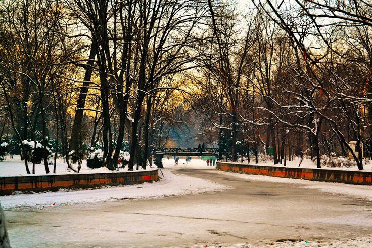 park in Bucharest