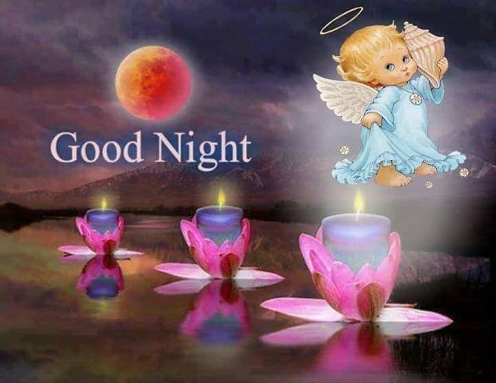 Pin on Süße Träume, gute Nacht!