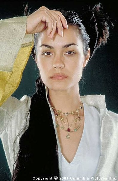 renaissance hair styles 1000 images about shannyn sossamon on the 3159