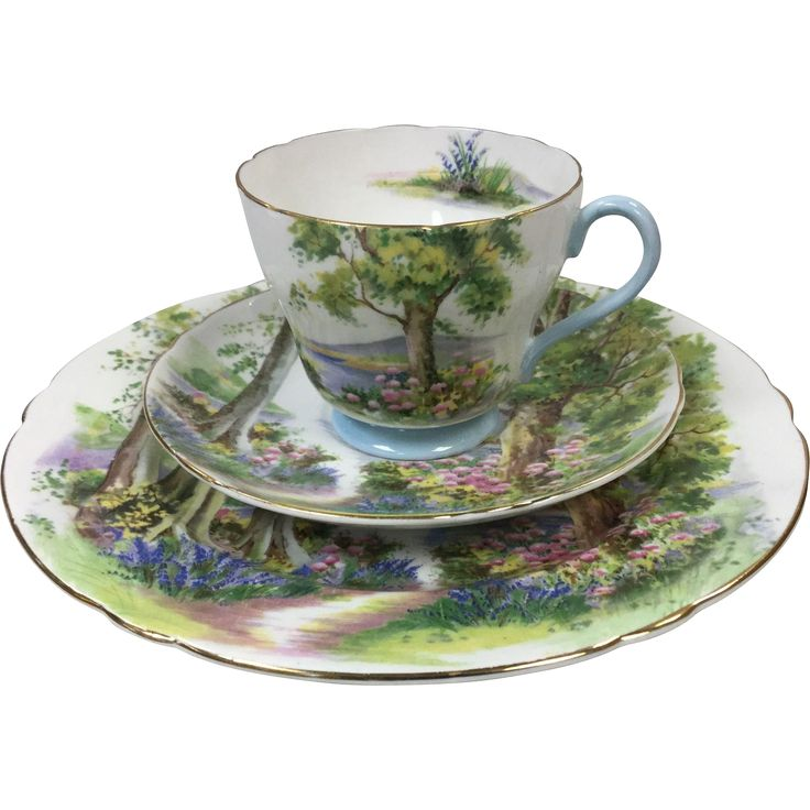 "Shelley Woodland Cup, Saucer and 8"" Plate from Reed's Antique and Collectibles at 30% off during the 72 Hour Ruby Lane Red Tag Sale beginning Friday, Sept. 23rd at 8am Pacific on Ruby Lane #RRTS #rubylane"