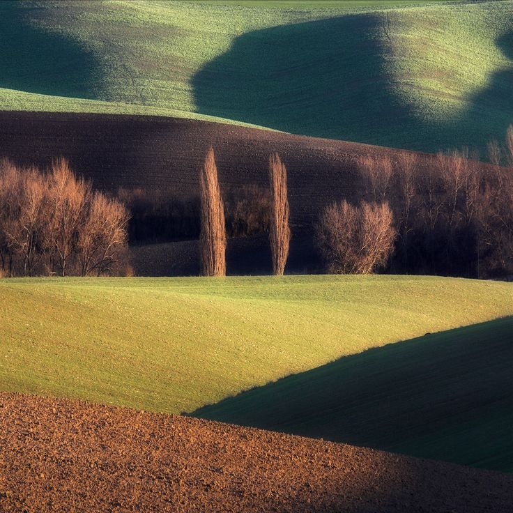 Moravian Fields on Behance