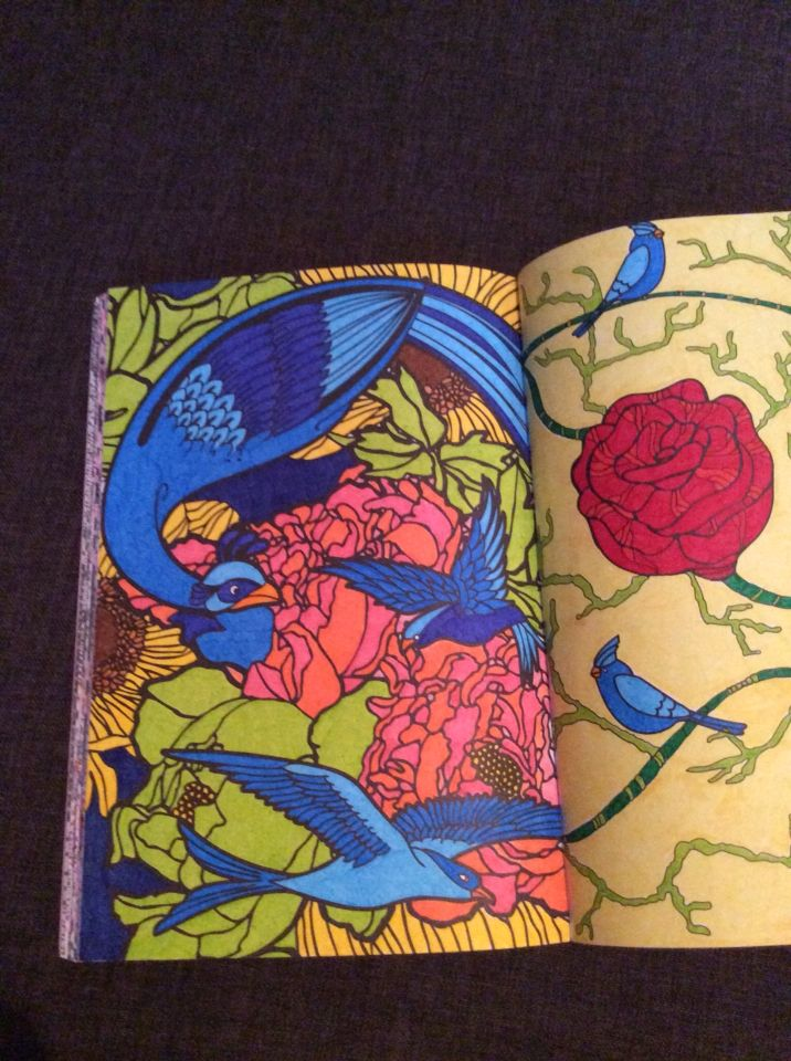 flor azul jardim secreto : flor azul jardim secreto:1000+ images about Kleuren on Pinterest