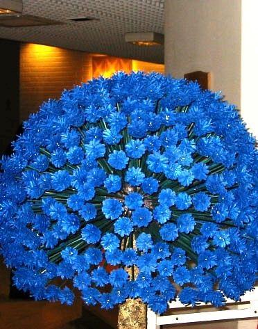Цветы и другие поделки из сосновых шишек! » Женский Мир