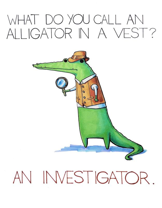 What Do You Call An Alligator In A Vest? (yes this belongs in the vacation board because I'm going to investigate the gators!!!)