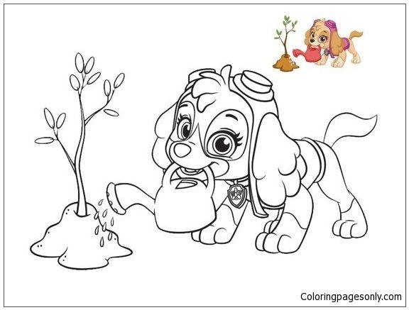 Skye From Paw Patrol 2 Coloring Page Paw Patrol Coloring Paw Patrol Coloring Pages Dog Coloring Page