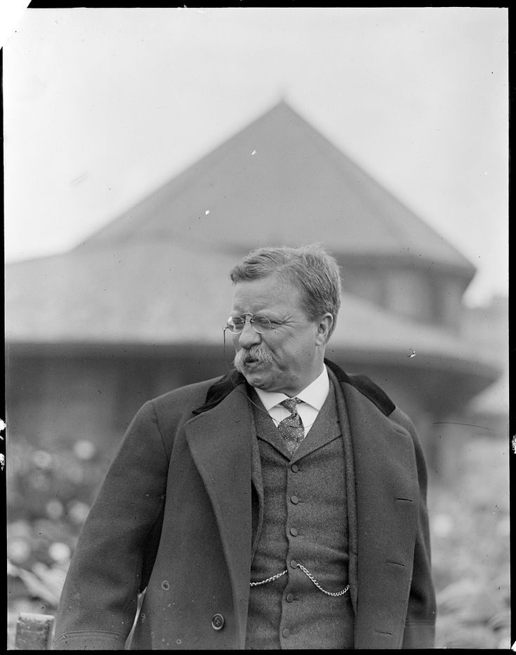 the policies of roosevelt an american president Theodore roosevelt was born  the standards living of the american people the president's dislike arose from the  roosevelt,1901-1909: domestic policies.