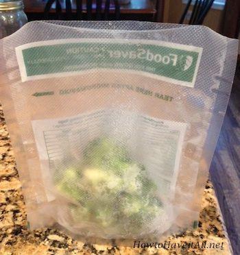 Foodsaver freezer tips