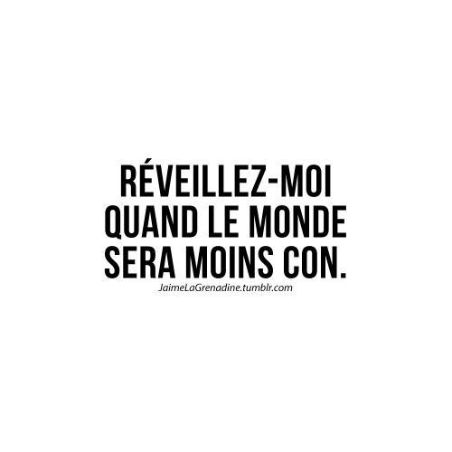 Réveillez-moi quand le monde sera moins con - #JaimeLaGrenadine #citation #punchline #mode #vdm #mondedemerde