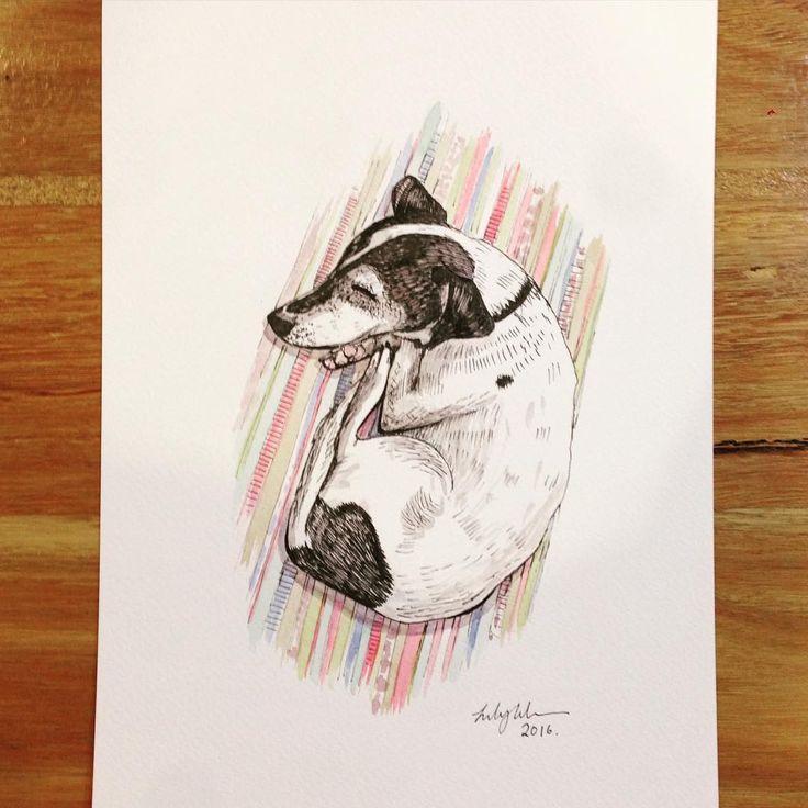 Sleeping dog. #sketch #watercolour #illustration #sleepingdog #sleepingbeauty #shadow #foxterrier #thesweetestthing #saturdaze #dogsitter
