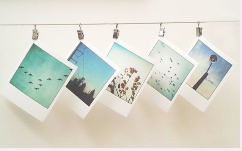 I want to get a Polaroid camera and do this!!
