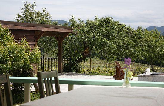 Al fresco dining at Zanatta Winery (Photo: Sheila Zeller)