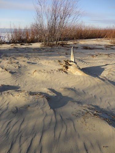 Slave Lake, Alberta  happy memories of sand castle building
