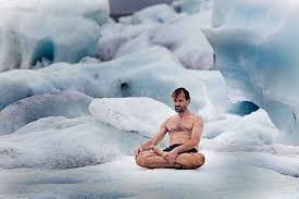 Resultado de imagem para paisagens de gelo