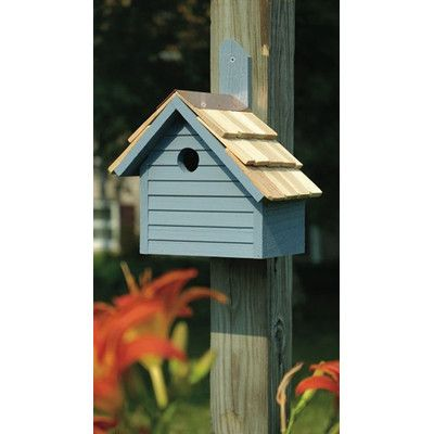 Heartwood Cape Cod 12 in x 10 in x 6 in Wren House Color: Blue Pickle