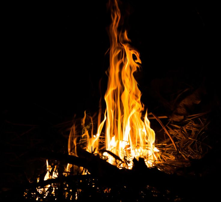 36 best bornfire night images on pinterest