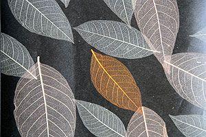 Natur Tapete mit echten Blättern gold braun weiss grau Natur Tapeten online kaufen