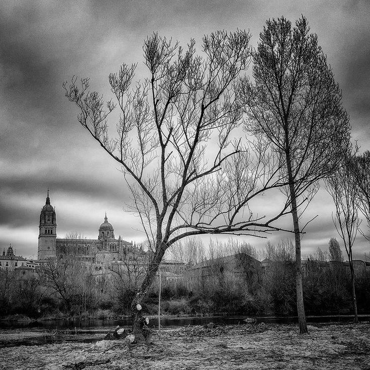 Salamanca 1:1 - 072