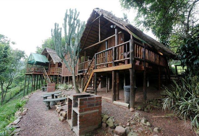 Treehouse River Lodge