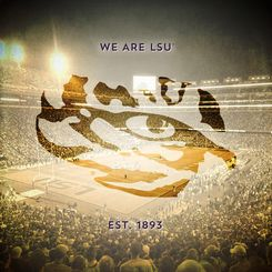 Buy Picture: We Are LSU