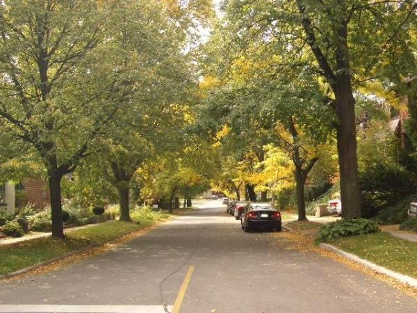 Video tour of Davisville, Yonge & Eglinton and Leaside neighbourhoods...