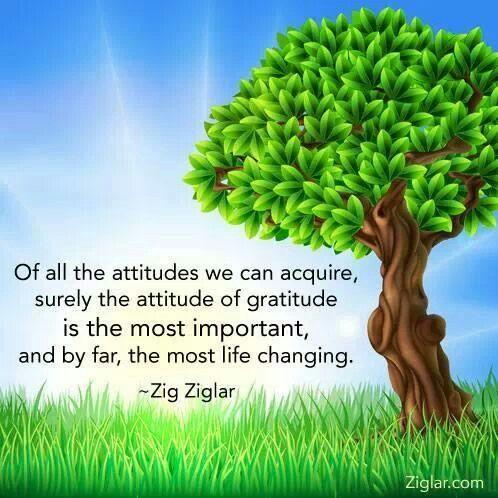 Zig Ziglar Quotes On Attitude