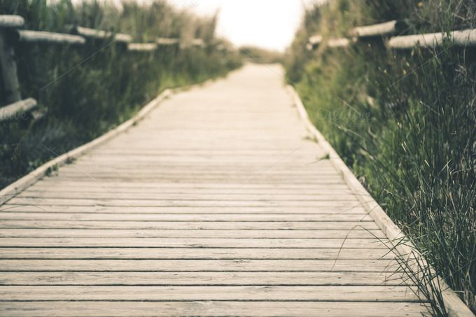 Wooden pathway by fotopitu on Creative Market