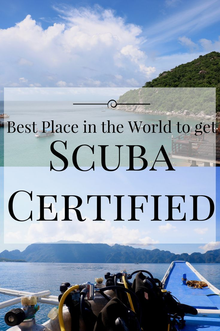 If you've been thinking about getting your scuba certification, I only have one thing to say: DO IT! And better yet, I know the best place in the world for you to do it at.  Follow the link to find out where and why I feel this way!