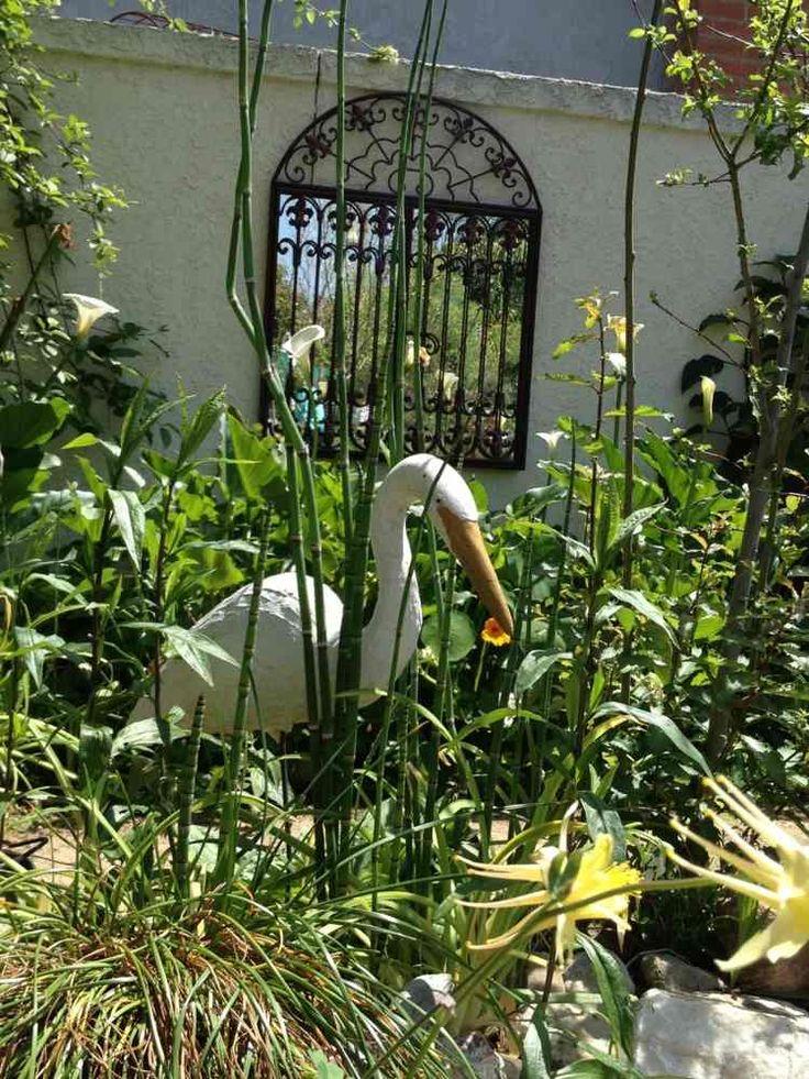 74 best mur anti bruit images on Pinterest Backyard ideas, Garden