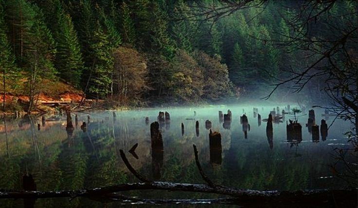 Red Lake -