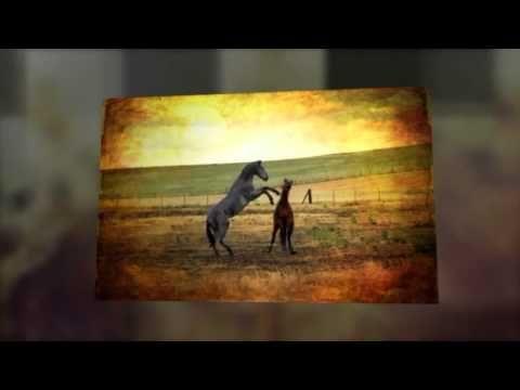 velmi silná očišťující a uvolňující mantra Om Namah Shivaya - YouTube