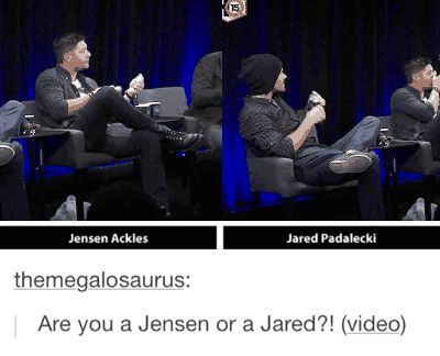 I am definitely a Jared