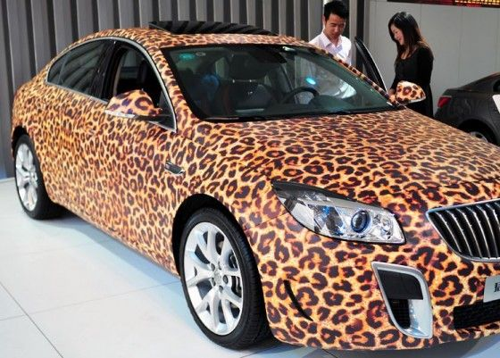 Allegra's Wacky Facts: Leopard Print Car!