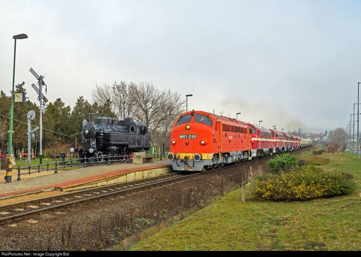 RailPictures.Net Photo: M61 019 Hungarian State Railways (MÁV) M61 at Csopak, Hungary by Balázs Bálint