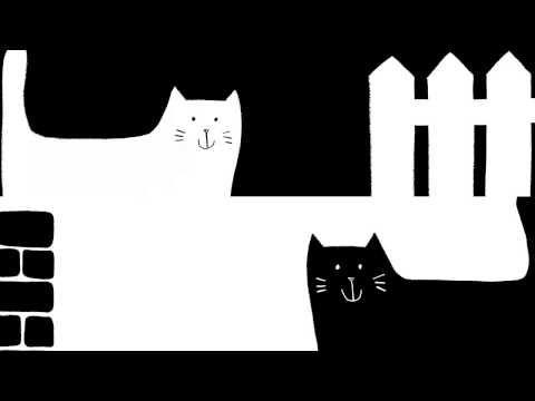 Black Cat, White Cat - book trailer! - YouTube