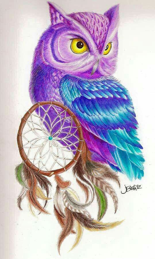 Purple and Owl!!