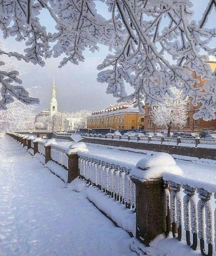 картинки зимний санкт петербург красочные