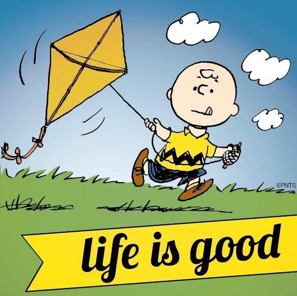 """""""Life Is Good"""" Quote And Charlie Brown Cartoon Via Www"""