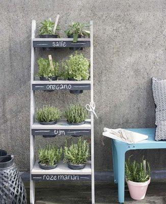 Een kruidentuin op je balkon - Wonen, Maken & Leven