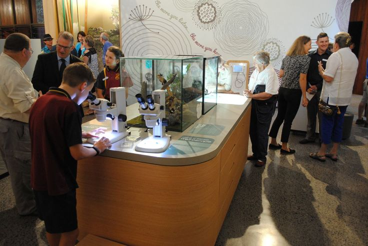 Visitors enjoying interactive displays at Mary Cairncross Scenic Reserve Rainforest Discovery Centre #FocusProductions