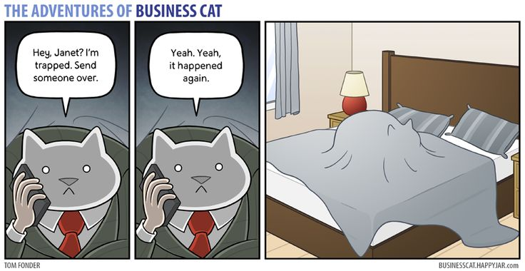 The Adventures of Business Cat — (via Business Cat - Trapped)