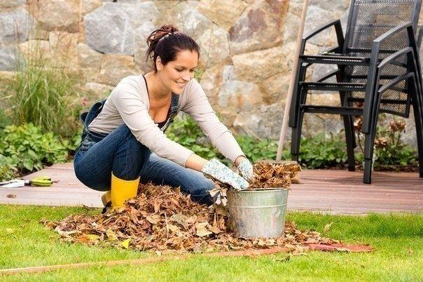 Как утилизировать мусор на даче: 5 полезных советов - Садоводка