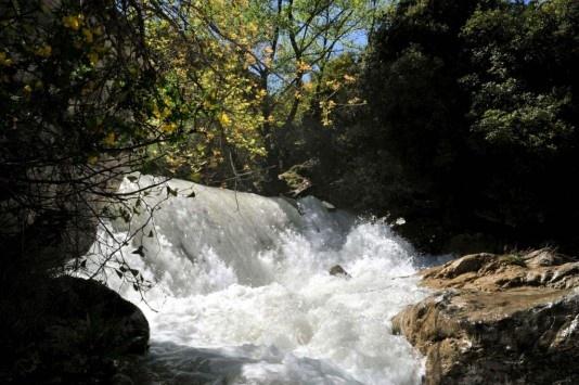 Οι δυνάμεις του νερού είναι στενά συνδεδεμένες με τη ζωή και το θάνατο, υγρές δονήσεις που υποκινούν τις μεταμορφώσεις του σώματος και της ψυχής…!!!