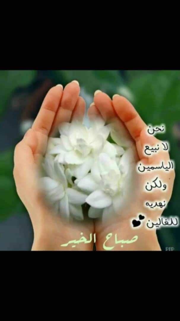 Pin By فلسطينية ولي الفخر On منشوراتي المحفوظة In 2020 Floral Rings Floral Flowers