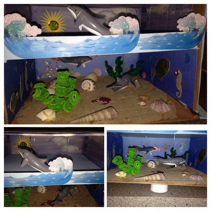 3D dolphin habitat project | My DIY projects! | Pinterest ...