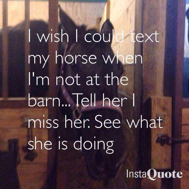 I wish I could text my horse