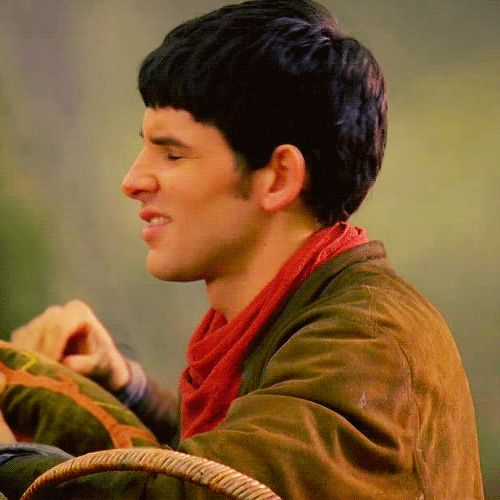 So Ridiculously Adorable Gif Merlin Pinterest